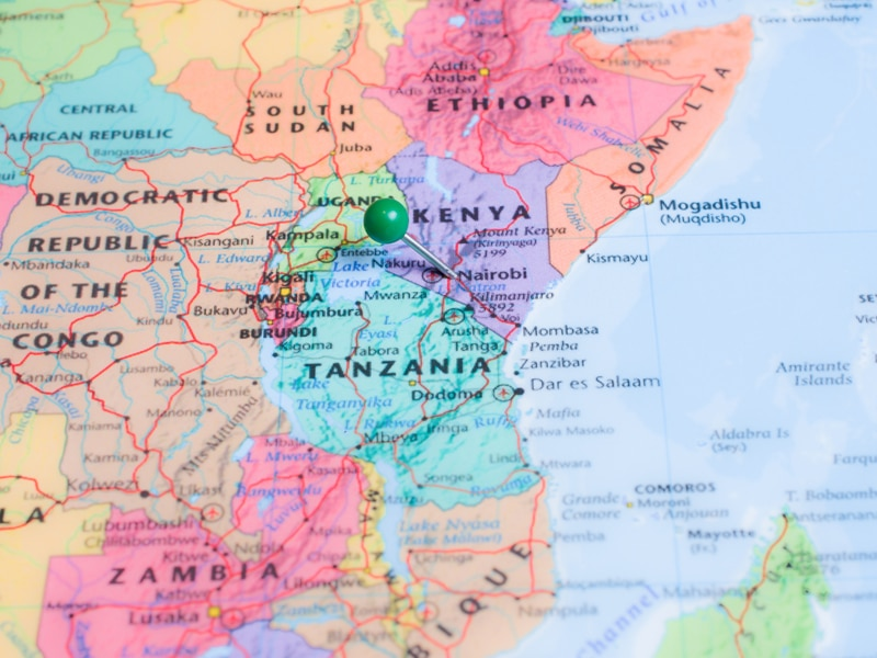 Kenyan banks to offer relief to distressed borrowers -central bank