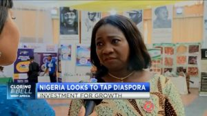What Nigeria is doing to tap into diaspora investment for growth