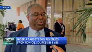 FIRS: Current strategy of government must focus on non-oil sector