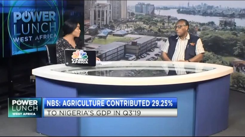 Nigeria's agricultural sector performance review