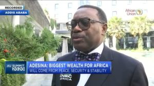 AU Summit 2020: Africa's youth are our greatest asset & we have to invest in them – Adesina