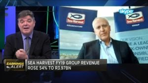Acquisitions boost Sea Harvest's full-year earnings