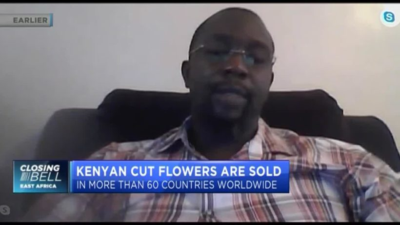 What's behind Kenya's 60% drop in flower production?