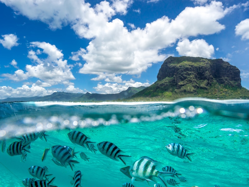 Op-Ed: Tourism sector in Mauritius devastated by COVID-19