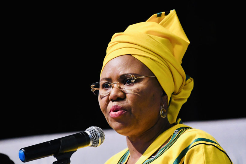 South Africa to introduce universal income grant – minister