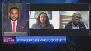 How Nigeria can ensure food security