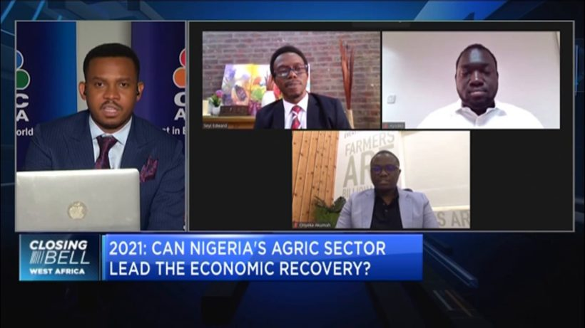 2021: How the agriculture sector can drive Nigeria's economic recovery