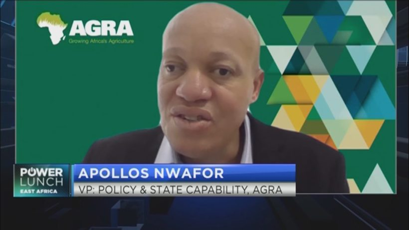 AGRA: How digitalization can help strengthen food systems in Africa