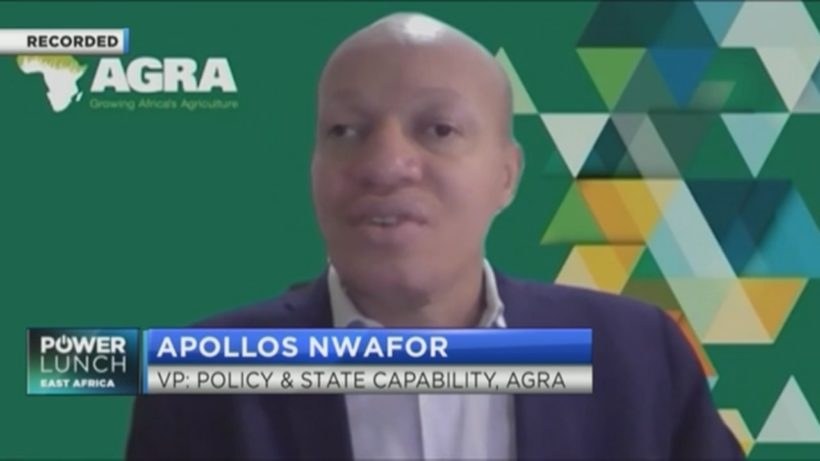 AGRA's Nwafor explains why partnerships are key to driving inclusive agricultural transformation