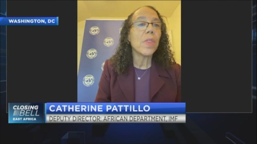 IMF's Pattillo on how to attract private finance to Africa's development