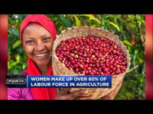 AGRF on how to built resilient and robust food systems for all